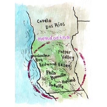 Coro Mendocino wines – Macro Terroir